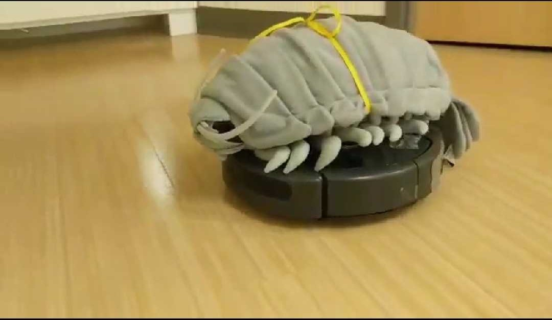 Wallace on a Roomba