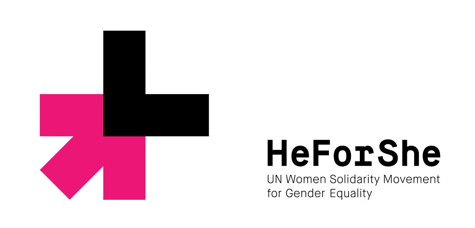 st jerome s heforshe gender equity essay contest st jerome s st jerome s heforshe gender equity essay contest