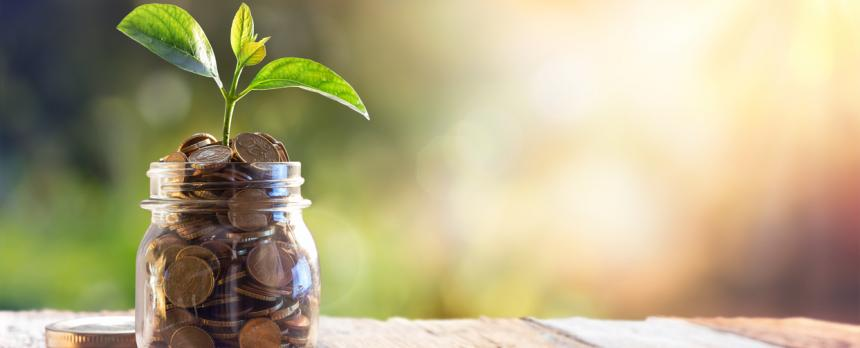 Image of a jar filled with coins and a plant in it