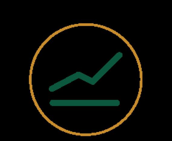Icon of a line graph