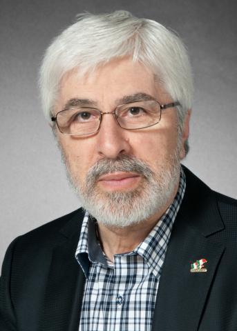 Professor Gabriel Niccoli
